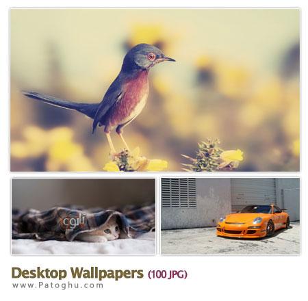 دانلود مجموعه ۱۰۰ بکگراند HD برای دسکتاپ Desktop HD Wallpapers