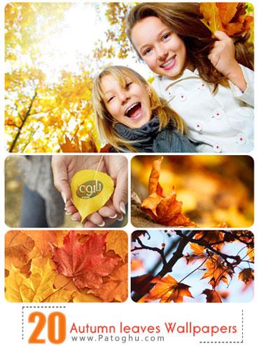 مجموعه 20 تصویر بکگراند زیبا و با کیفیت با موضوع پاییز - Autumn leaves Wallpapers