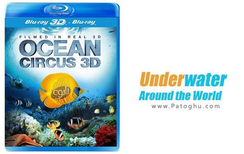 دانلود مستند بسیار زیبای جهان زیر آب - Underwater Around the World 2012