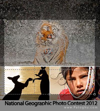 دانلود مجموعه 50 والپیپر برتر جشنواره نشنال جئوگرافیک ۲۰۱۲
