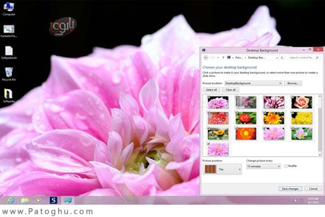 دانلود تم بسیار زیبای گل های فوق العاده برای ویندوز 7 ، 8 و 8.1 - Fantastic Flowers Theme