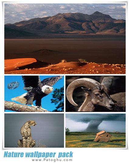 دانلود مجموعه 93 والپیپر دسکتاپ زیبا از طبیعت و حیات وحش Nature wallpaper