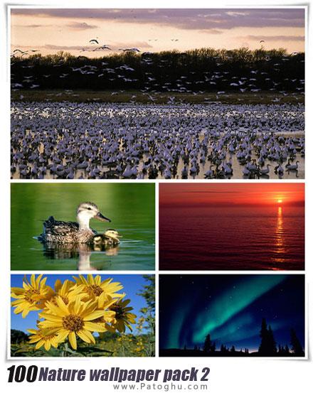 دانلود مجموعه 100 بکگراند زیبا و با کیفیت طبیعت برای دسکتاپ Nature wallpaper pack 2