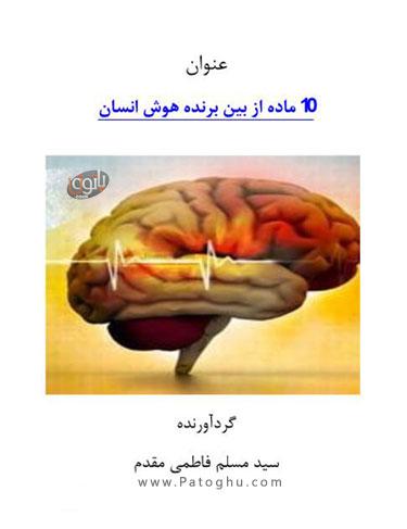 دانلود کتاب ده ماده از بین برنده هوش انسان