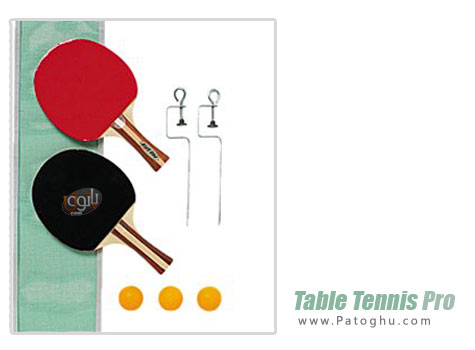 دانلود بازی تنیس روی میز برای کامپیوتر Table Tennis