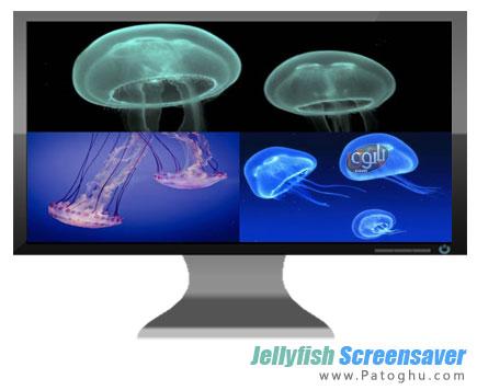 دانلود محافظ صفحه نمایش بسیار زیبای عروس دریایی Jellyfish Screensaver 2013