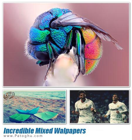 دانلود مجموعه 98 پس زمینه دسکتاپ با کیفیت و دیدنی دسکتاپ - Incredible Mixed Walpapers