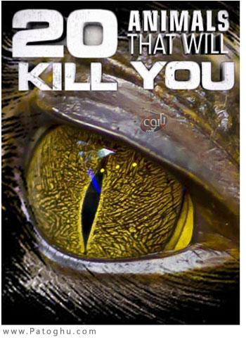 دانلود مستند 20 حیوان کشنده جهان Animals That Will Kill You