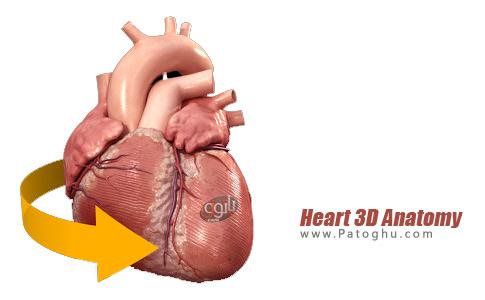 نرم افزار Heart 3D Anatomy