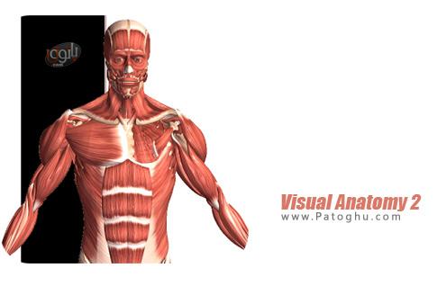 نرم افزار Visual Anatomy 2