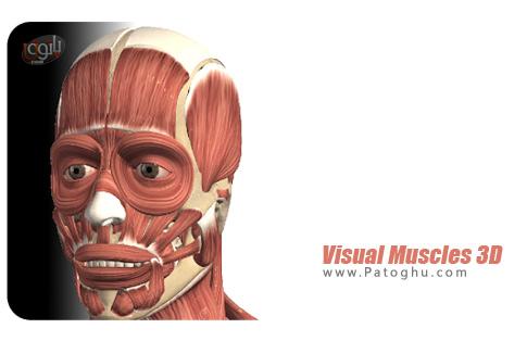 نرم افزار Visual Muscles 3D