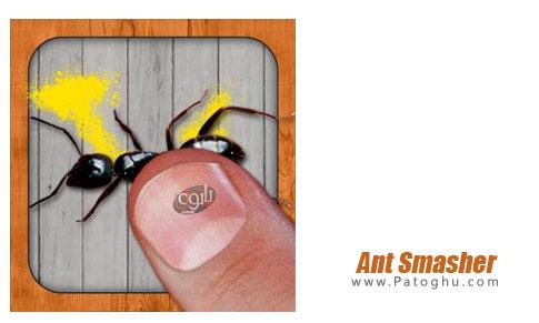 بازی Ant Smasher