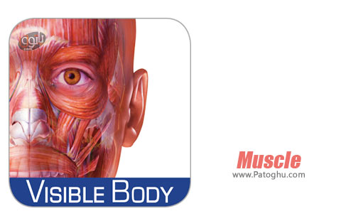 نرم افزار Muscle Premium