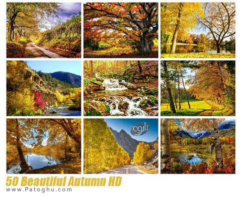 مجموعه تصاویر زیبا با موضوع پاییز برای پس زمینه دسکتاپ Beautiful Autumn HD Wallpapers