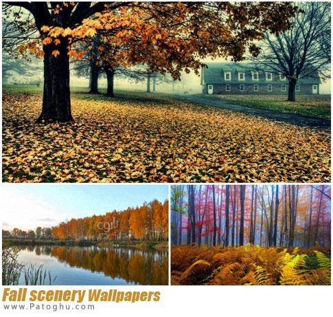 مجموعه 225 عکس با کیفیت از چشم اندازهای طبیعی و بکر برای پس زمینه Fall scenery