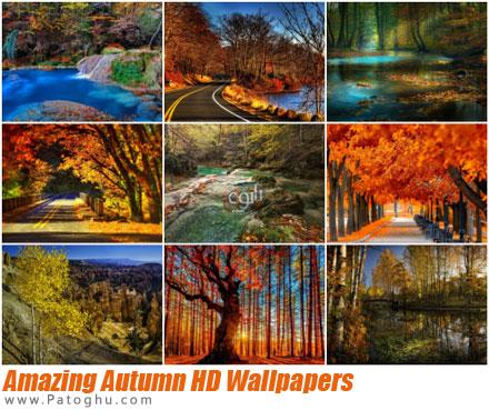 تصاویر والپیپر پاییز شگفت انگیز با کیفیت اچ دی Amazing Autumn HD Wallpapers