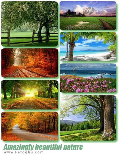 مجموعه والپیپر زیبا و شگفت انگیز از طبیعت برای دسکتاپ Amazingly beautiful nature