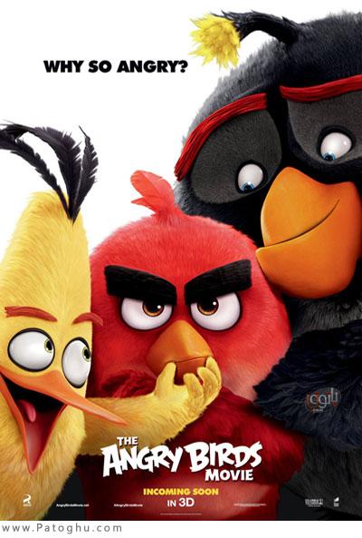 دانلود انیمیشن سینمایی انگری بردز The Angry Birds Movie 2016