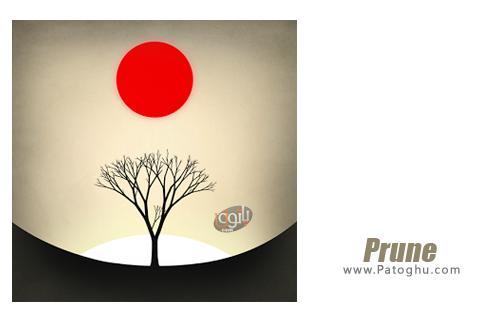 بازی Prune