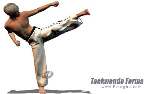 دانلود Taekwondo Forms