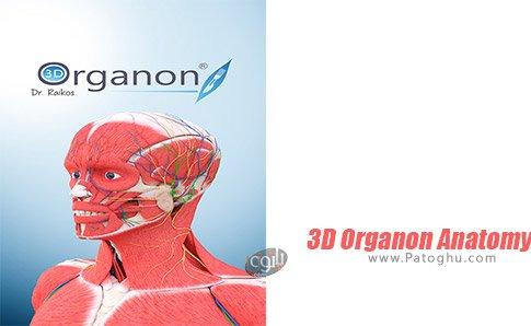 دانلود 3D Organon Anatomy برای ویندوز