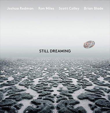 آهنگ بی کلام آرامش بخش Joshua Redman - Still Dreaming