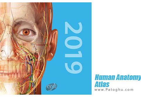 Human-Anatomy-Atlas