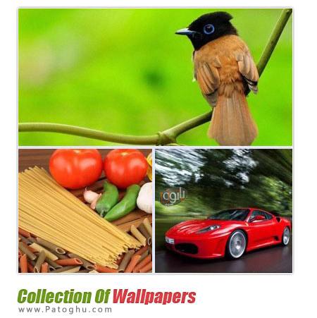 دانلود مجموعه ۲۷۰ پس زمینه زیبا و دیدنی Collection Of Wallpapers