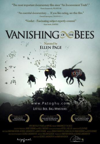 دانلود مستند انقراض زنبورها The Vanishing of the Bees