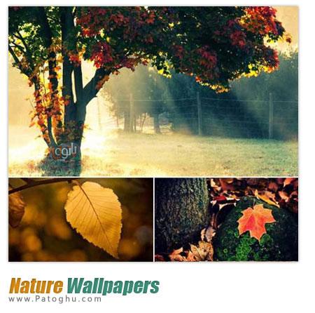 240 تصویر زیبا و دیدنی با موضوع طبیعت - Nature Wallpapers