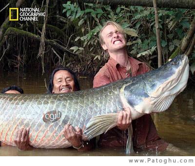 دانلود مستند هیولای رودخانه ی آمازون Fish Warrior: Amazon Giant 2011