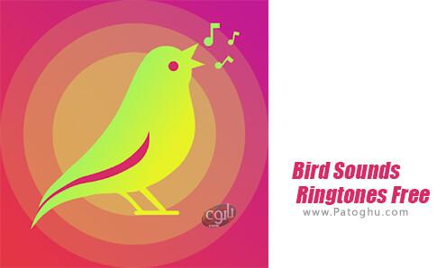 دانلود Bird Sounds Ringtones Free برای اندروید