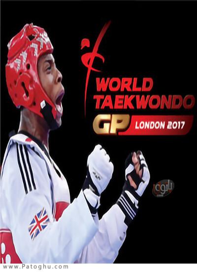 دانلود Taekwondo Grand Prix برای ویندوز