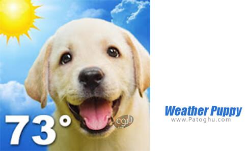 دانلود Weather Puppy برای اندروید